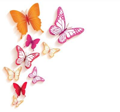 Fotomural Mariposas de colores realistas aisladas para la primavera