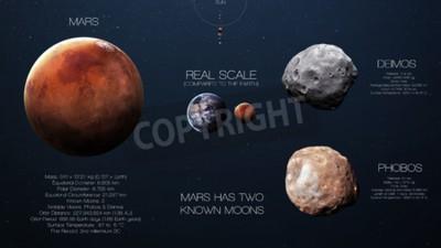 Fotomural Marte - Infografía de alta resolución sobre el planeta del sistema solar y sus lunas. Todos los planetas disponibles.