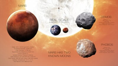 Fotomural Marte - Infografía de alta resolución sobre el planeta del sistema solar y sus lunas. Todos los planetas disponibles. Esta imagen de elementos proporcionados por la NASA