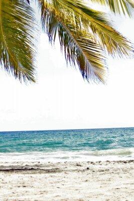 Fotomural Mer, antillas, caraibes, tropiques ...