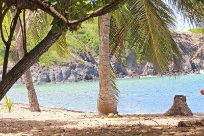 Fotomural Mer, antillas, caraibes, tropiues ...