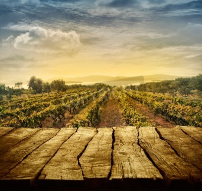 Fotomural Mesa de madera. Diseño de la primavera con el viñedo y la visualización vacía. Espacio para su montaje. Cosecha de uvas de otoño