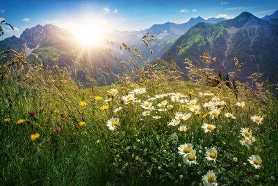 Fotomural Montañas paisaje en Vorarlberg