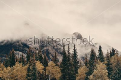Fotomural Montañas y bosque de niebla del parque nacional de Banff en Canadá.