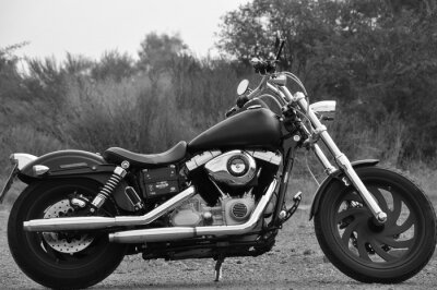 Fotomural Motorrad - Chopper