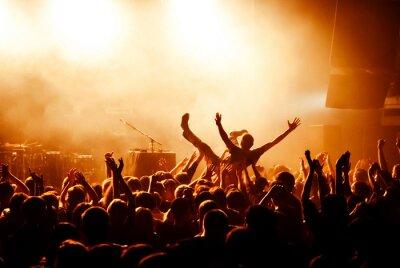 Fotomural Multitud de surf durante el concierto