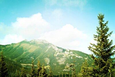 Fotomural Naturaleza en las montañas.
