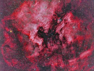 Fotomural NGC 7000 América del Norte Imágenes de nebulosa con un telescopio y una cámara CCD científica