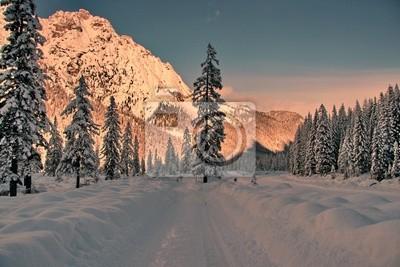 Fotomural nieve 14