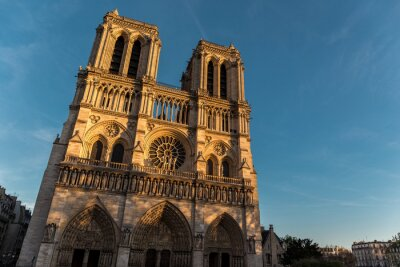 Fotomural Notre Dame de Pari