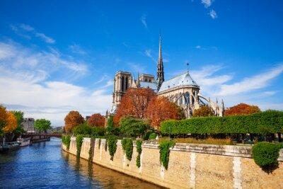 Fotomural Notre Dame de Paris a lo largo del río Sena