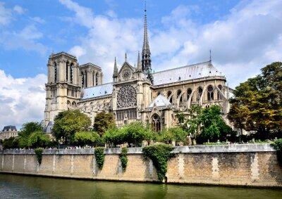 Fotomural Notre-Dame, París
