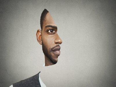 Fotomural Óptico frontal ilusión retrato con cortar secciones de la misma