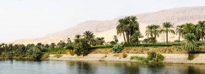 Fotomural Orilla del Nilo en la naturaleza