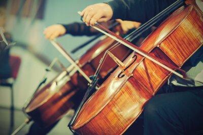 Fotomural Orquesta Sinfónica en el escenario, manos tocando el violoncelo
