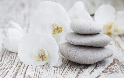 Fotomural Orquídeas spa