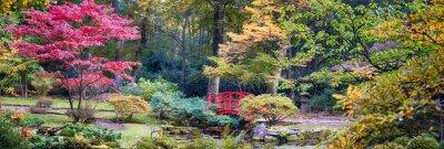 Fotomural Otoño en el parque japonés, panorama