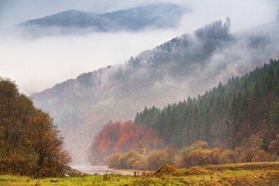 Fotomural Otoño lluvia y niebla en las montañas. Fondo colorido del bosque del otoño