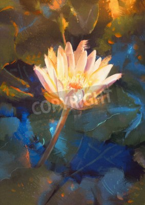 Fotomural painting of beatiful yellow lotus blossom,single waterlily flower blooming on pond