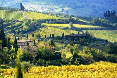 Fotomural Paisaje en la región de Chianti, Toscana, Italia