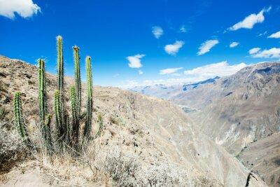 Fotomural paisaje Perú