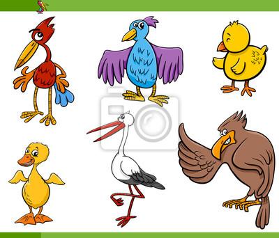 Pájaros Dibujos Animados Conjunto Ilustración Fotomural