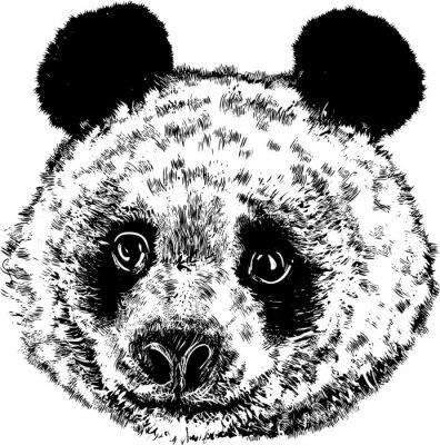 Fotomural Panda 01