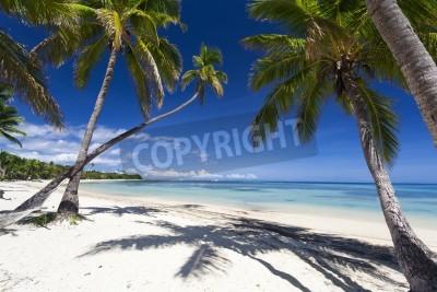 Fotomural Paraíso tropical en Fiji Islandia