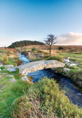 Fotomural Parque Nacional Dartmoor