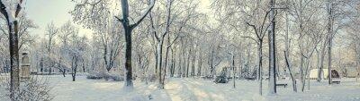 Fotomural Parque público de Europa con árboles y ramas cubiertas de nieve y hielo, bancos, poste de luz, paisaje.