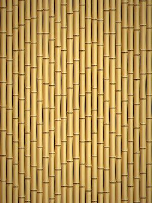 Fotomural patrón de bambú