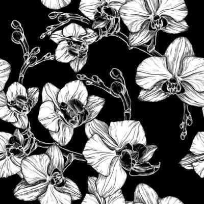 Fotomural Patrón sin fisuras blanco y negro con dibujo a mano flor orquídea
