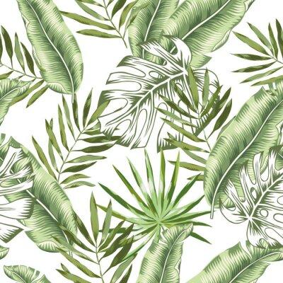 Fotomural Patrón transparente de vector. Ilustración de follaje de selva tropical. Vegetación exótica de las plantas. Naturaleza paradisiaca
