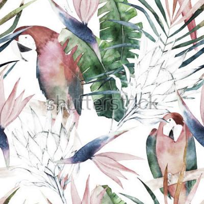 Fotomural Patrón tropical sin problemas con loros, protea y hojas. Estampado acuarela de verano. Dibujado a mano exótico ilustración