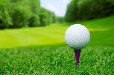 Fotomural Pelota de golf en curso