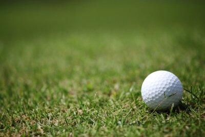 Fotomural Pelota de golf en el césped