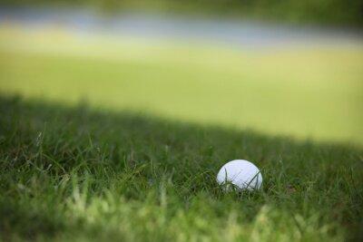 Fotomural Pelota de golf en el curso