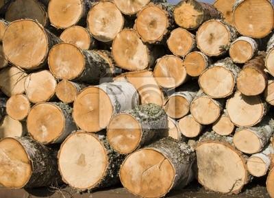 Fotomural Pila de troncos de abedul
