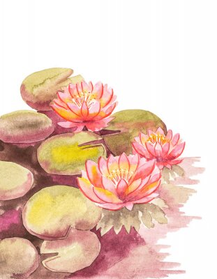 Fotomural Pink lotuses with brown-green leaves, top right blank background for an inscription, watercolor handwork.