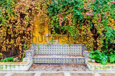 Fotomural pintoresca imagen de un banco con azulejos tradicionales frente a una pared revestida de vid