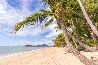 Fotomural Playa del Caribe