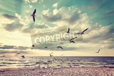 Fotomural Playa estilizada retro con los pájaros de vuelo en la puesta del sol.