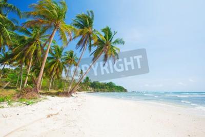 Fotomural Playa tropical con coco y mar