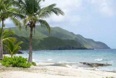 Fotomural Playa y Montañas en St. Croix
