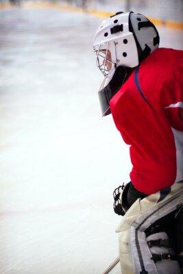 Fotomural Portero de hockey