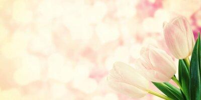 Fotomural Postal del vintage con las flores del tulipán