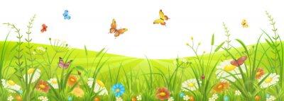 Fotomural Pradera floral de verano o primavera con hierba verde, flores y mariposas
