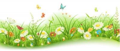 Fotomural Primavera o verano banner floral con hierba verde, flores y mariposas