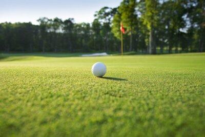 Fotomural Primer plano de una pelota de golf en verde