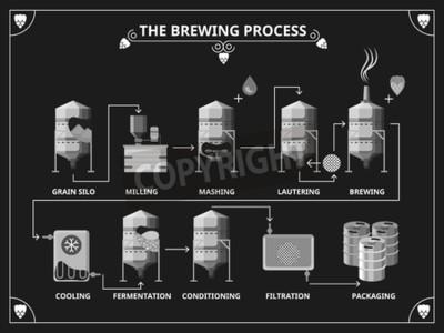 Fotomural Proceso de elaboración de la cerveza. Conjunto de infografía de producción de cerveza vectorial. Orden de maceración lautering ilustración del producto